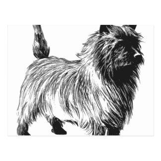 cairn terrier-greyscale art.png postcard