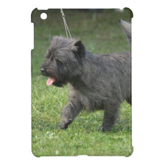 Cairn Terrier iPad Mini Covers