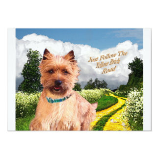 Cairn Terrier Just Follow yellow Brick Road Card