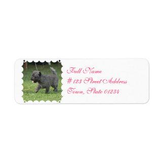 Cairn Terrier Return Address Labels