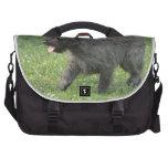 Cairn Terrier Laptop Bag