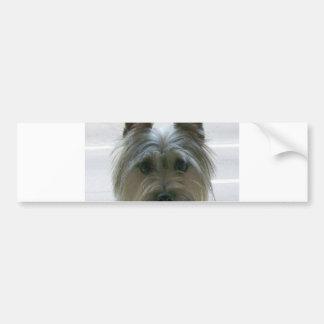 cairn terrier.png bumper sticker