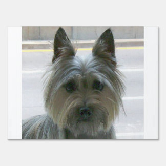 cairn terrier.png sign