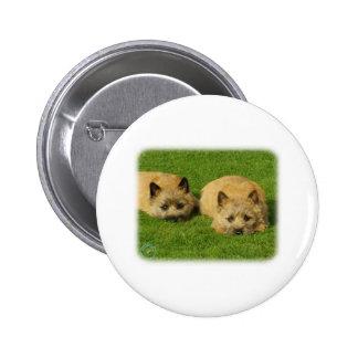 Cairn Terrier puppies 9W048D-007 Pin