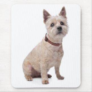 Cairn Terrier Puppy Dog Computer Mousepad