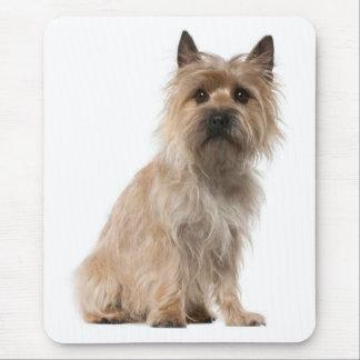 Cairn Terrier Puppy Dog Mousepad