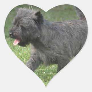 Cairn Terrier Heart Sticker