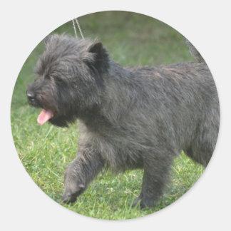 Cairn Terrier Round Sticker