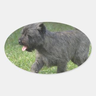 Cairn Terrier Sticker