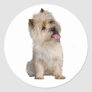 Cairn Terrier (Wheaten) - looking to the side Classic Round Sticker