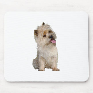 Cairn Terrier (Wheaten) - looking to the side Mouse Pad