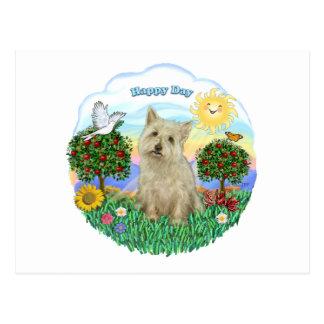 Cairn Terrier (wheaten) Postcard