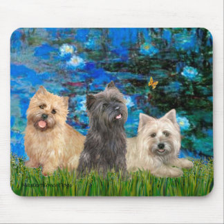 Cairn Terriers 4-13-21 - Lilies 3 Mouse Pad