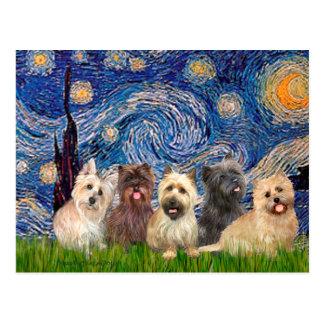 Cairn Terriers (Five) - Starry Night Postcard