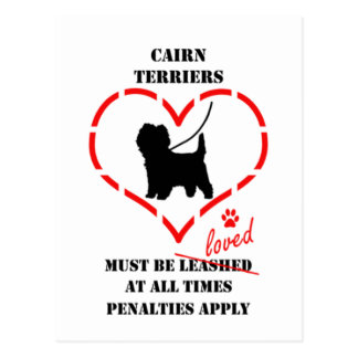 Cairn Terriers Must Be Loved Postcard