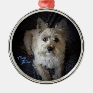 Kysd43Mill Cairn Terrier Young Man Christmas Ornaments Round Novelty Ceramic Christmas Tree Decoration Ornament Gifts for Friends,for Family
