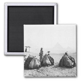 Cairo Egypt, Camel Jockeys Giza Pyramids (NR) 2 Inch Square Magnet