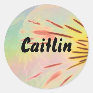 Caitlin Pegatinas