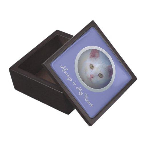 Caja adaptable de la memoria del mascota (azul cla cajas de joyas de calidad