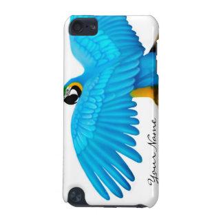 Caja adaptable de la mota del loro del Macaw del a
