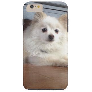 caja al azar del teléfono del perro funda para iPhone 6 plus tough