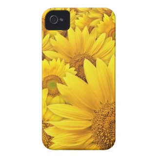 Caja amarilla de Iphone 4S del girasol Funda Para iPhone 4 De Case-Mate