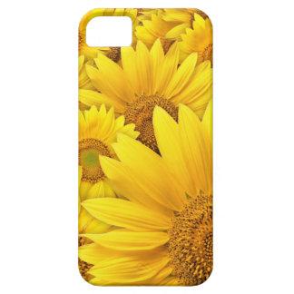 Caja amarilla de Iphone 5S del girasol iPhone 5 Fundas