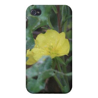 Caja amarilla de la mota de Iphone 4/4s de la flor iPhone 4/4S Fundas