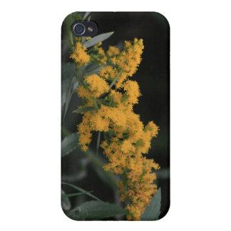 Caja amarilla de la mota de Iphone 4/4s de los Wil iPhone 4/4S Carcasas