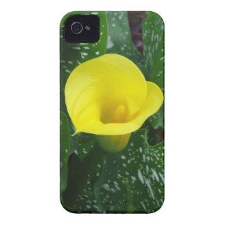 Caja amarilla del iPhone 4 de la cala Carcasa Para iPhone 4 De Case-Mate