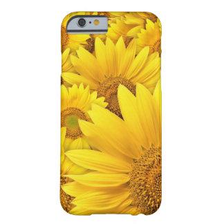 Caja amarilla del iPhone 6 del girasol