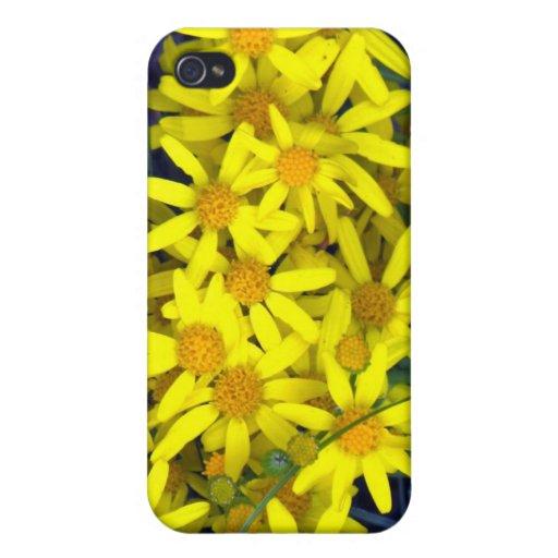 Caja amarilla del iPhone de las margaritas iPhone 4 Carcasas