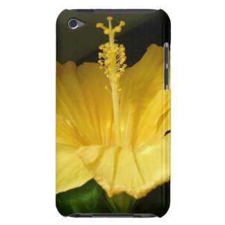 Caja amarilla floreciente de iTouch del hibisco iPod Case-Mate Protectores