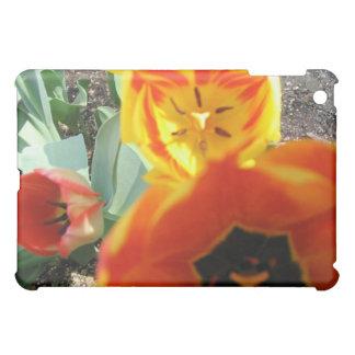 Caja amarilla y anaranjada del iPad del tulipán