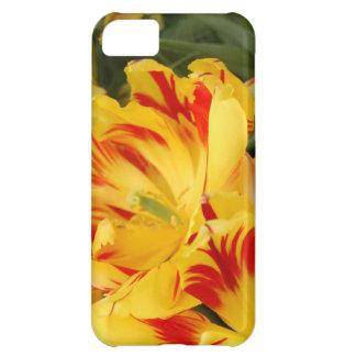 Caja amarilla y roja bonita del iphone del tulipán