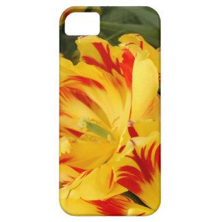 Caja amarilla y roja bonita del iphone del tulipán iPhone 5 protector