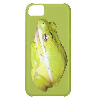 Caja americana verde de Iphone 5 de la rana arbóre