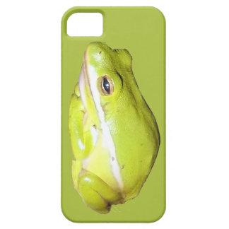 Caja americana verde de Iphone 5 de la rana arbóre iPhone 5 Case-Mate Fundas