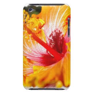 Caja anaranjada de iTouch del hibisco iPod Case-Mate Protectores