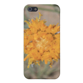 Caja anaranjada de la mota del iPhone 4/4s del Wil iPhone 5 Fundas