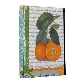 Caja anaranjada del ipad de la fruta del vintage