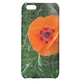 Caja anaranjada del iPhone 4 de la amapola