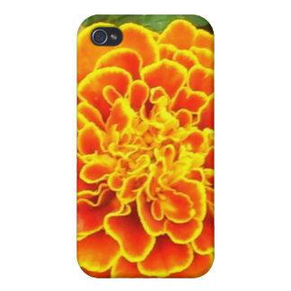 Caja anaranjada del iPhone 4 de la maravilla iPhone 4 Coberturas