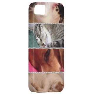 Caja animal del teléfono celular Iphone5 iPhone 5 Fundas