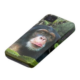 Caja animal del teléfono de la fauna del gran mono