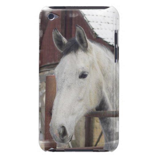 Caja árabe blanca de iTouch del caballo iPod Case-Mate Protectores