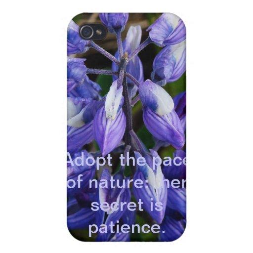Caja ártica salvaje de la mota del wildflower de A iPhone 4 Cárcasa