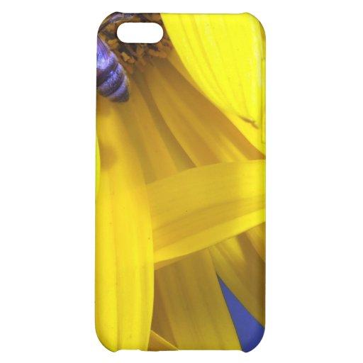 Caja azul amarilla del iPhone 4 de la abeja de los