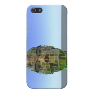 Caja azul de Iphone del horizonte del Bot a cuadro iPhone 5 Fundas
