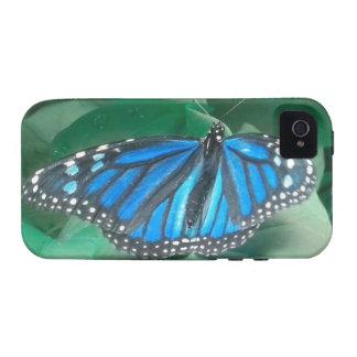 Caja azul del iPhne 4 de la mariposa de monarca iPhone 4/4S Fundas